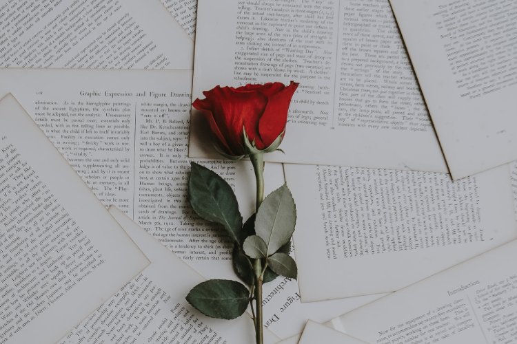 How to Send a Rose Text Message in Phone